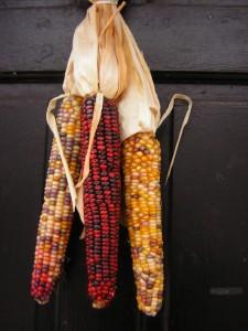 Indian Corn decoration on door